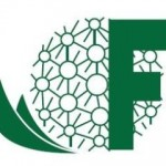 Logo Fima little