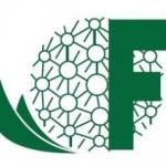 Logo Fima little