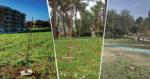Valorizzazione del patrimonio forestale pubblico attraverso la Campagna Mosaico Verde. Gli Enti pubblici si raccontano